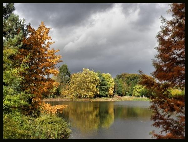 arboretum by MacroRebel
