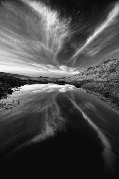 Reflections by cdavis