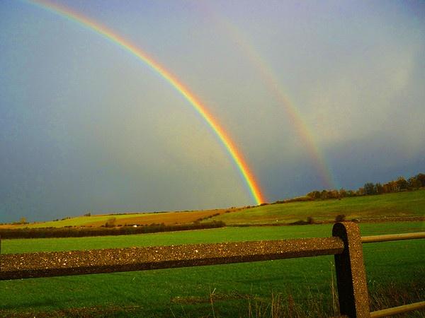 Rainbow by ChrisBilton