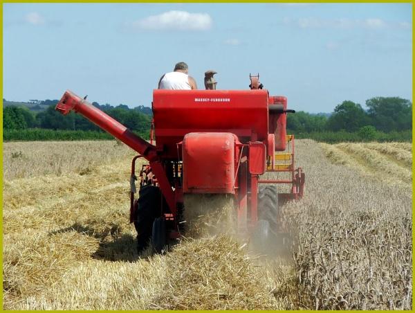 I got a Brand new combine harvester by jamestheboy