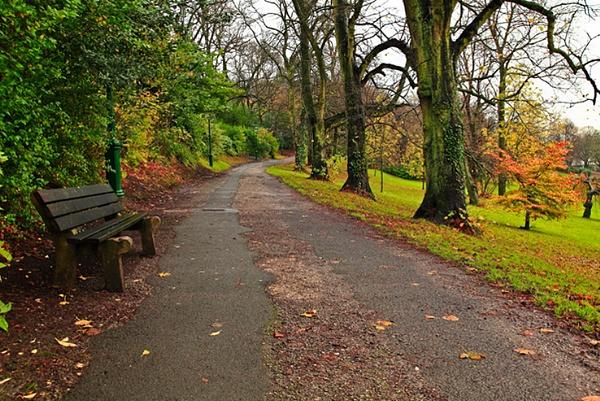 Avenham Park by Clayey