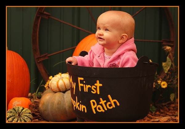 My first pumpkin patch by johnnyscirocco