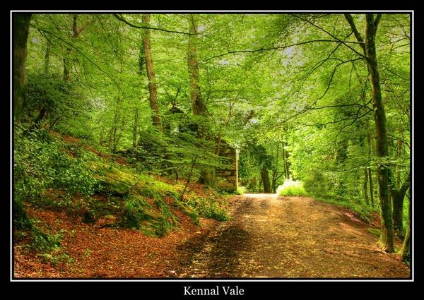 Kennal Vale by cider
