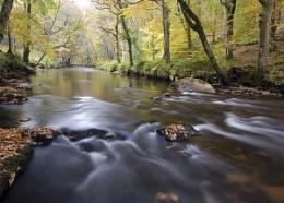 Teign Autumn