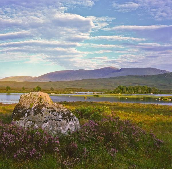 Rannoch Moor...midge heaven by SGIBBONS