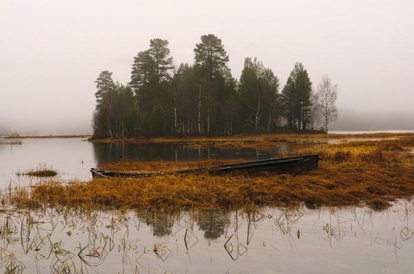 Misty by widols