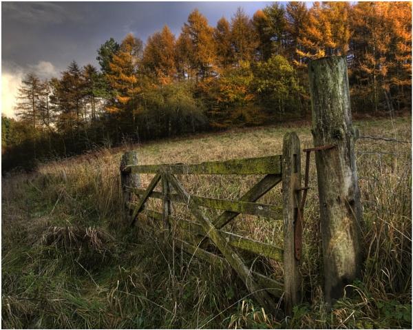Gateway to Autumn by iansnowdon