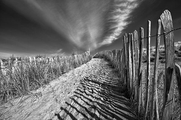 To the beach by manindevon