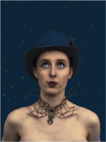 Starry, Starry Sky by stevenb