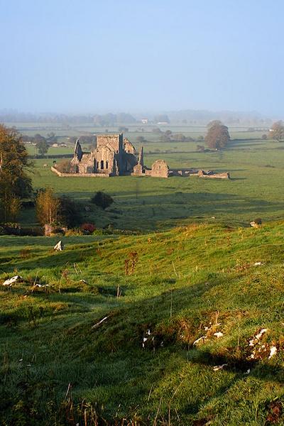 Hore Abbey by Callanan