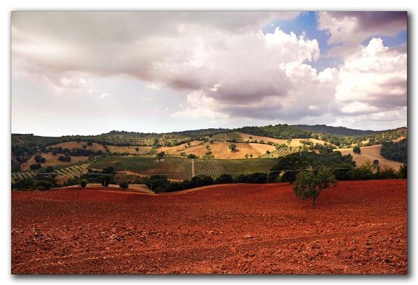 Tuscany 2 by jacekb