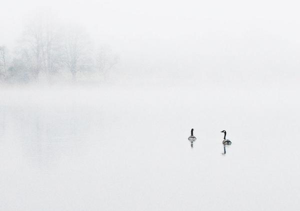 Misty Mentieth by fatherpie