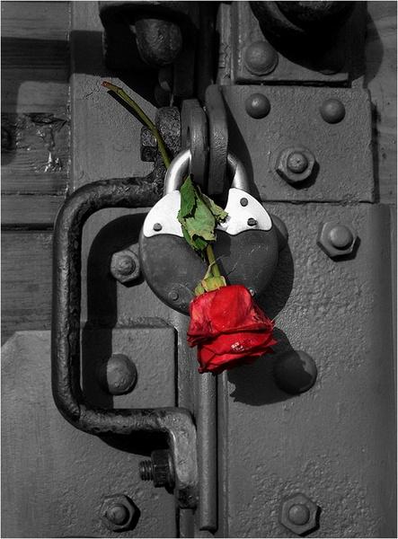 Rememberance by JanieB43