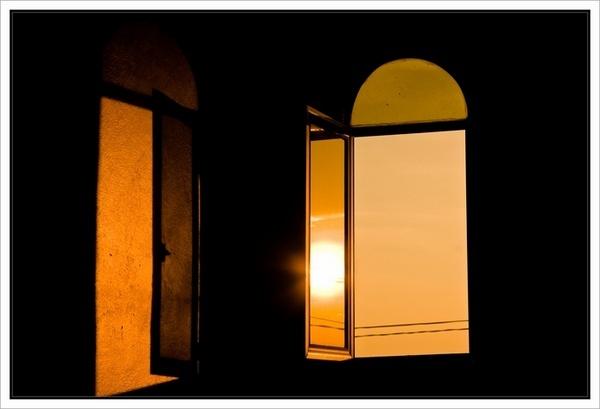 Golden delight by deja008