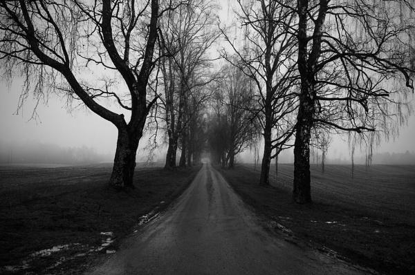 Driveway by widols