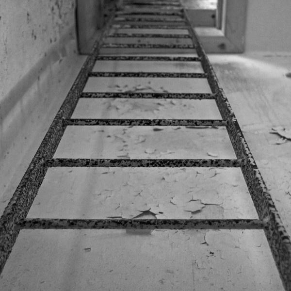 Ladder by Robe