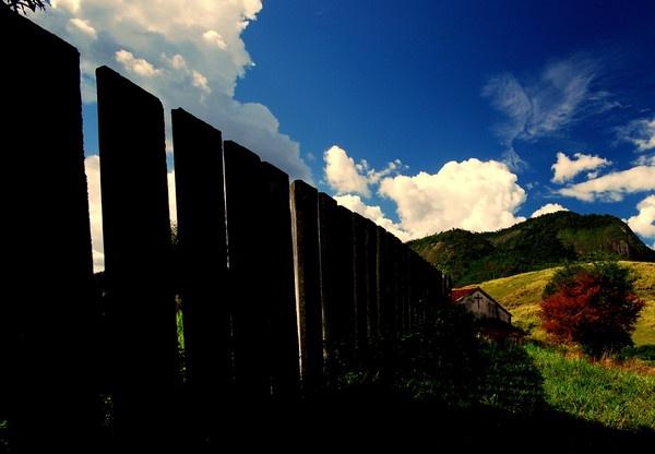 Fence>cross >& tree... by musashi