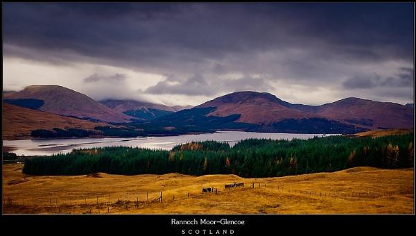 Rannoch Moor-Scotland by ovi