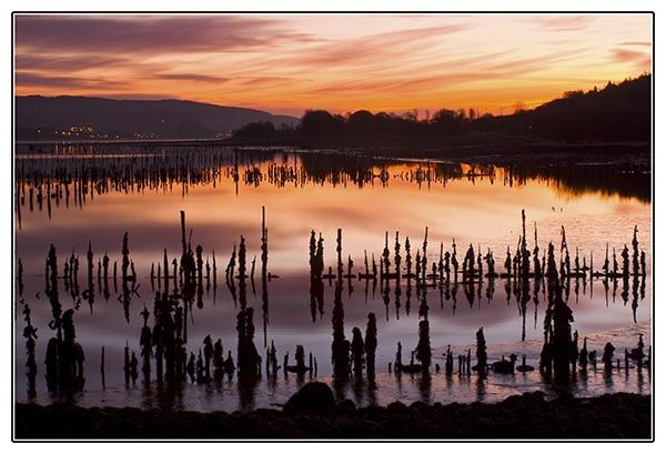 Timberponds Dawn by flatfoot471