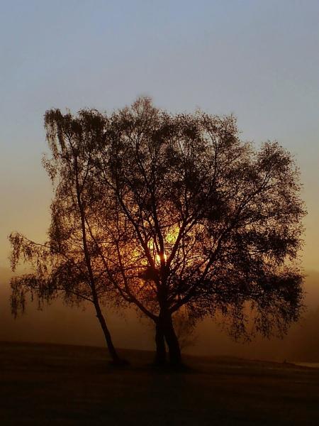 Dawn light by paulmeyer