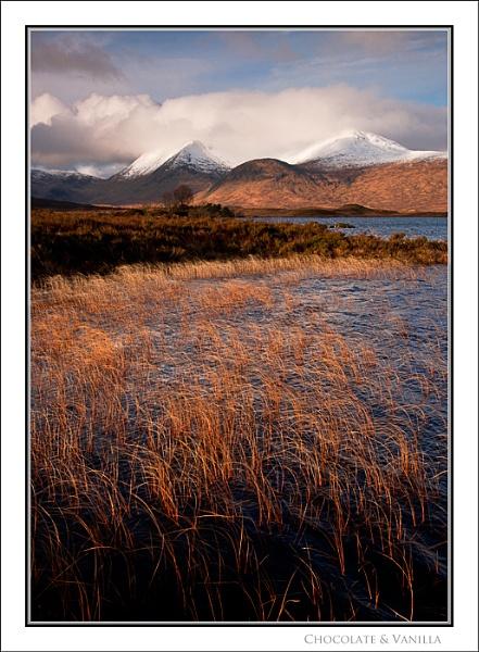 Chocolate & Vanilla... by Scottishlandscapes