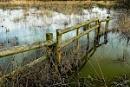 Flooded Fields by JJGEE