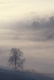Misty Peak 2