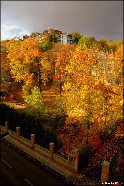 "12 December \""Gold Autumn\"" by GeorgeRusky"