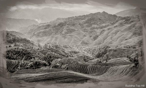 Buddha-Top Hill by Ridefastcarveha