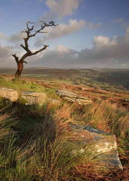 Devons Dartmoor by lakemans