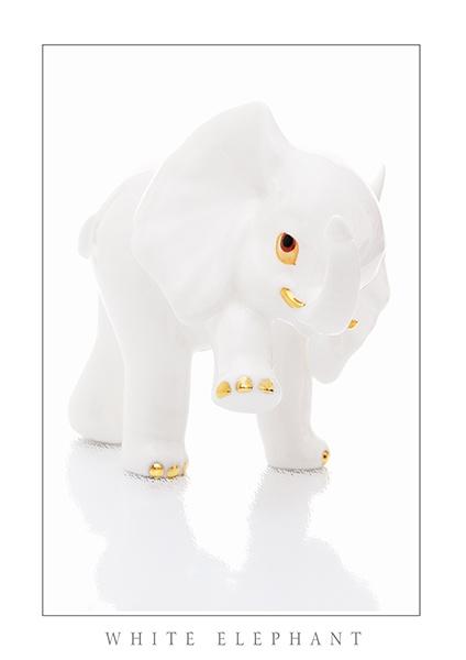White Elephant by sherring