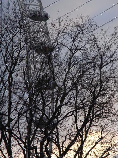 London Eye by bridget1234