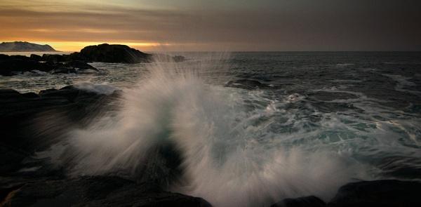 Wave by widols