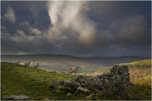 Enjoying The View by iansnowdon