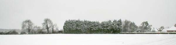 First Snow by GordonLack
