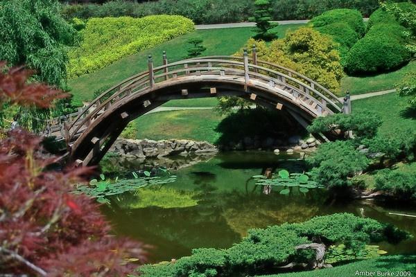Japanese Garden by ABurke