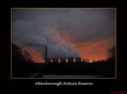 attenborough nature reserve at sunset
