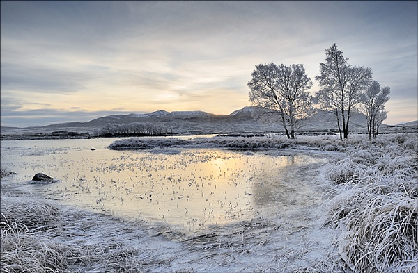 Rannoch Morning by peterpaterson