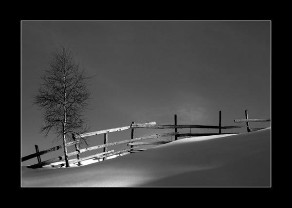 ... by george_gradinaru