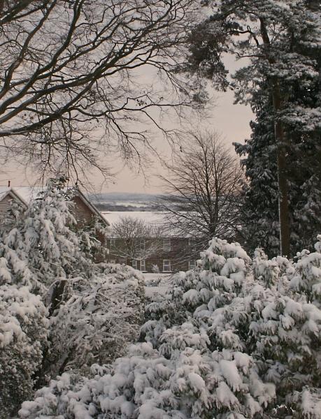snowy outlook by paulmeyer