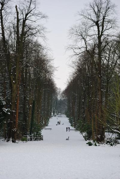 Winter Scene by FunnyTrickster