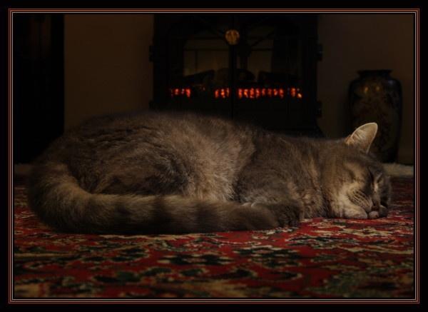 Sweet Dreams by Tebbs