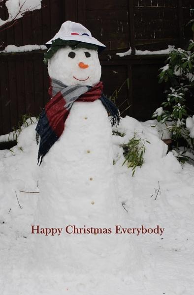 Mr Snowman by trissie