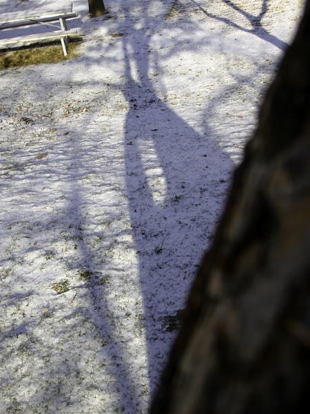FIRST OF SNOW 09-10 SEASON TAKE 02 by TimothyDMorton