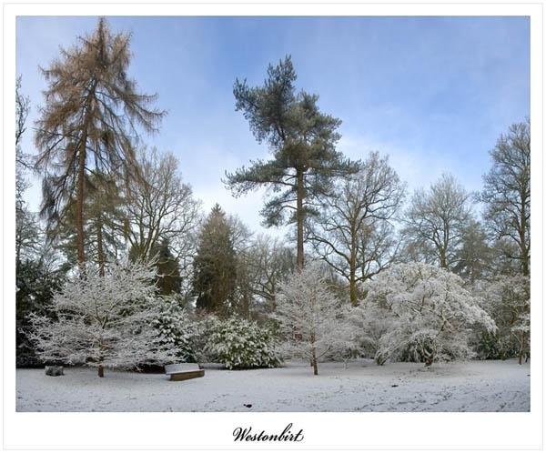 Christmas snow scene by Martin_R