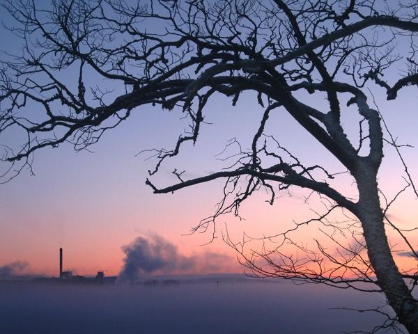scotch mist 2 by Charlie_Bailey