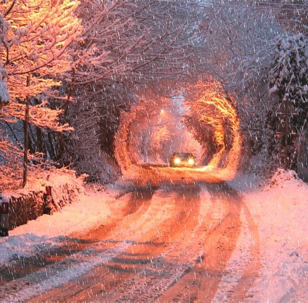 winter scene by Ada