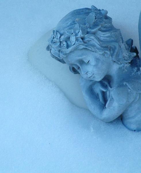 A winter nap by HectorRivera