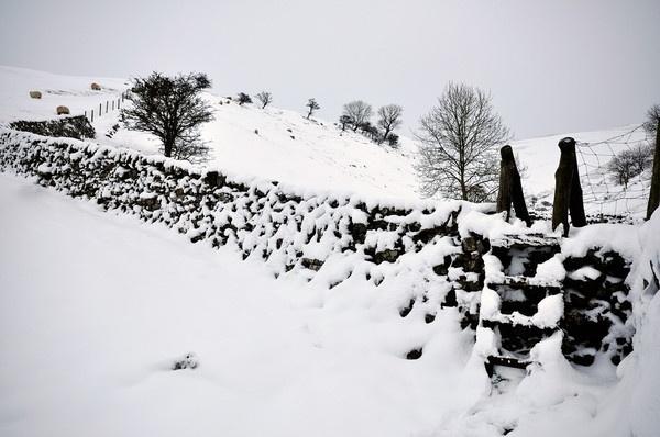 Snowy Stile by albinoni
