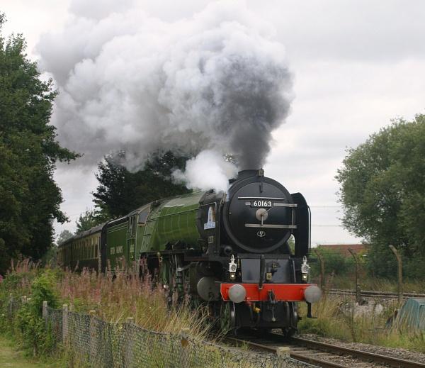 a good head of steam by chrisg7syt